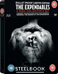 The Expendables (2010) - Steelbook (UK Import ohne dt. Ton)