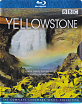 Yellowstone - Steelcase (TH Import ohne dt. Ton) Blu-ray