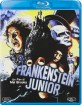 Frankenstein Junior (IT Import ohne dt. Ton) Blu-ray