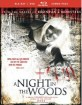 A Night in the Woods (2011) (Blu-ray + DVD) (Region A - US Import ohne dt. Ton) Blu-ray
