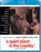 A Quiet Place in the Country (1968) (Region A - US Import ohne dt. Ton) Blu-ray