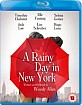 A Rainy Day in New York (UK Import ohne dt. Ton) Blu-ray
