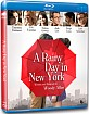 A Rainy Day in New York (Region A - US Import ohne dt. Ton) Blu-ray