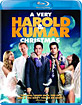 A Very Harold & Kumar Christmas (Blu-ray + UV Copy) (US Import ohne dt. Ton) Blu-ray