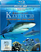 Abenteuer Karibik 3D - Tauchen mit den Haien (Blu-ray 3D)
