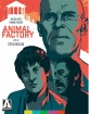 Animal Factory (2000) - Special Edition (Region A - US Import ohne dt. Ton) Blu-ray