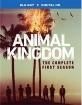 Animal Kingdom: The Complete First Season (Blu-ray + UV Copy) (US Import ohne dt. Ton) Blu-ray