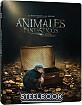 Animales Fantásticos y Dónde Encontrarlos (2016) - Edición Metálica (Blu-ray + DVD) (ES Import ohne dt. Ton) Blu-ray
