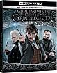 Animali Fantastici - I Crimini di Grindelwald 4K (4K UHD + Blu-ray) (IT Import) Blu-ray