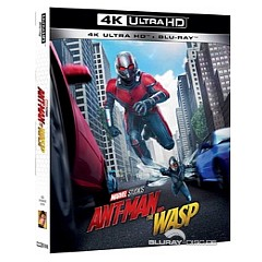 ant-man-and-the-wasp-4k-it-import.jpeg