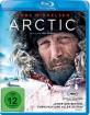 arctic-2019_klein.jpg