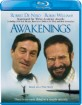 Awakenings (1990) (Region A - US Import ohne dt. Ton) Blu-ray
