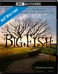 Big Fish (2003) 4K (4K UHD + Blu-ray) (FR Import) Blu-ray