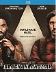 blackkklansman-2018-uk-import-draft_klein.jpg