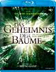 Das Geheimnis der Bäume (CH Import) Blu-ray