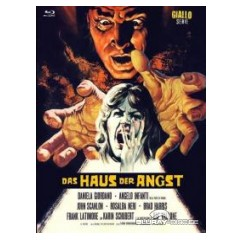 das-haus-der-angst-limited-x-rated-eurocult-collection-59-cover-a.jpg