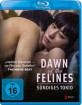 dawn-of-the-felines-de_klein.jpg