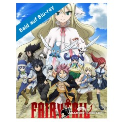 fairy-tail---vol.-12.jpg