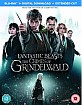 Fantastic Beasts: The Crimes of Grindelwald - Theatrical and Extended Cut (Blu-ray Bonus + Blu-ray + Digital Copy) (UK Import ohne dt. Ton) Blu-ray