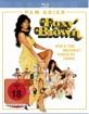 foxy-brown-final_klein.jpg