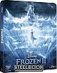 Frozen II: Il Segreto di Arendelle - Steelbook (Blu-ray + DVD) (IT Import)