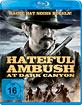 Hateful Ambush at Dark Canyon Blu-ray