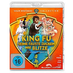 king-fu-seine-faeuste-zucken-wie-blitze-shaw-brothers-collection-de.jpg