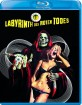 Labyrinth des roten Todes (Limited Edition)