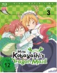 miss-kobayashi's-dragon-maid---vol.-3_klein.jpg