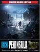 peninsula-2020-4k-limited-deluxe-edition-4k-uhd-und-blu-ray-und-2-bonus-blu-ray-de_klein.jpg