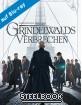 phantastische-tierwesen-grindelwalds-verbrechen-3d-limited-steelbook-edition-blu-ray-3d---blu-ray_klein.jpg