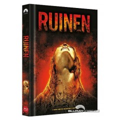 ruinen-limited-mediabook-edition-cover-b.jpg