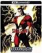 Shazam! (2019) 4K - Limited Edition Illustrated Artwork Steelbook (4K UHD + Blu-ray) (IT Import ohne dt. Ton) Blu-ray