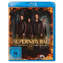 supernatural---die-komplette-zwoelfte-staffel-blu-ray---uv-copy-de.jpg