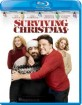 Surviving Christmas (2004) (US Import ohne dt. Ton) Blu-ray