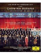 the-forbidden-city-concert---carmina-burana--2_klein.jpg