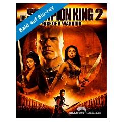 the-scorpion-king-2-aufstieg-eines-kriegers-limited-mediabook-edition-cover-c---de.jpg
