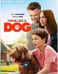 Think Like a Dog (2020) (Blu-ray + Digital Copy) (Region A - US Import ohne dt. Ton)
