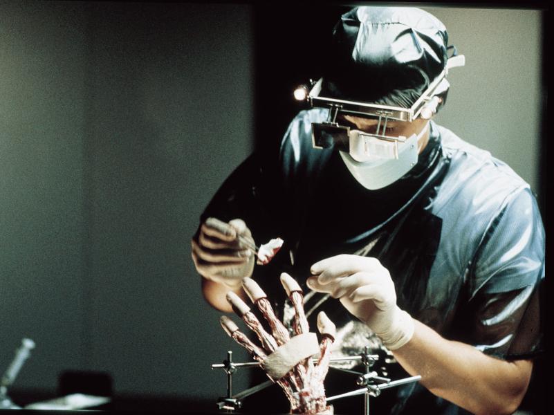 Anatomie-Reviewbild-04.jpg