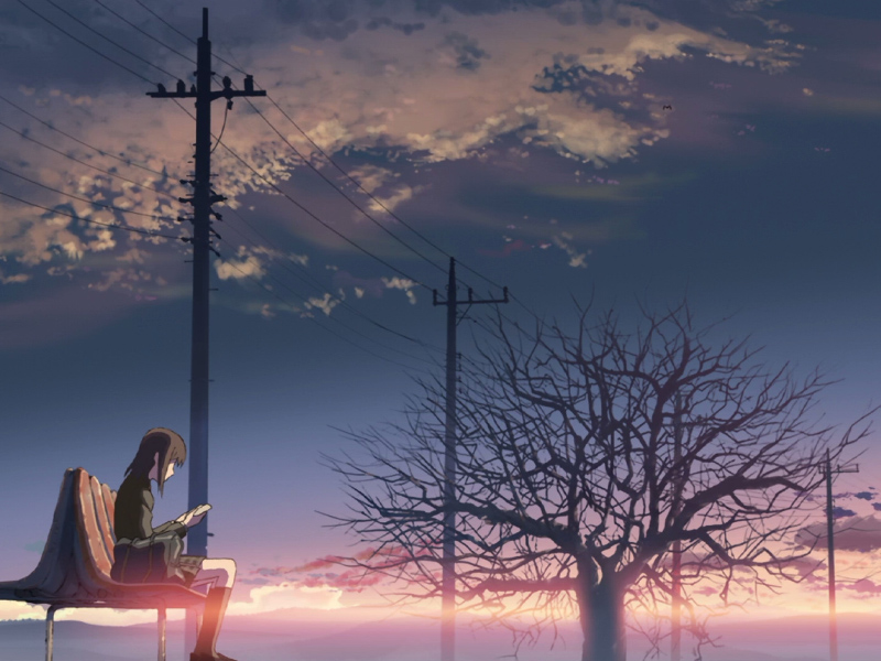 5_Centimeters_per_Second_01.jpg