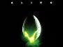 Alien-1979-News.jpg