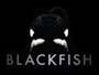 Blackfish-News.jpg
