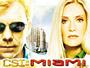 CSI-Miami.jpg