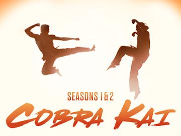 Cobra-Kai-Newslogo.jpg