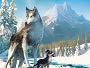 Die-Abenteuer-von-Wolfsblut-News.jpg