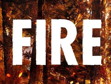 Fire_2020_News.jpg