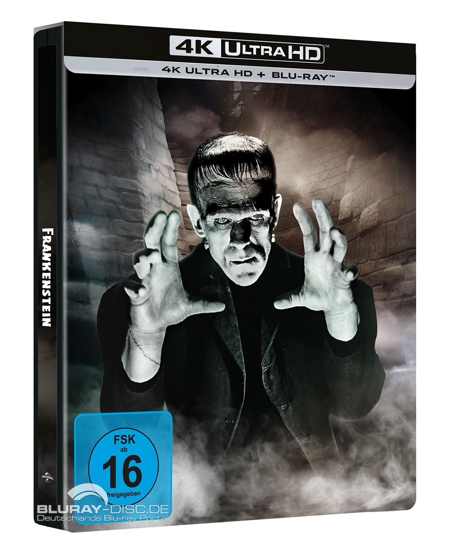Frankenstein_1931_Galerie_4K_Steelbook.jpg