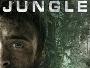 Jungle-2017-News.jpg