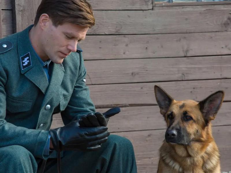 Shepherd_Die_Geschichte_eines_Helden_01.jpg