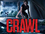 crawl_news.jpg